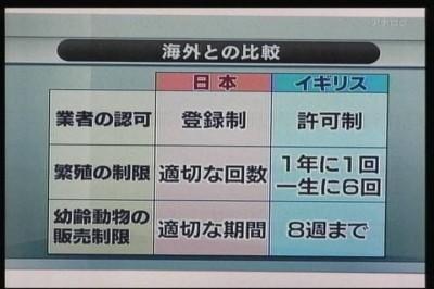 09年08月05日19時30分-NHK総合(名古屋)-[S]クローズアップ現代 旬なテーマから-0(5)