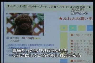 09年08月05日19時30分-NHK総合(名古屋)-[S]クローズアップ現代 旬なテーマから-0(4)