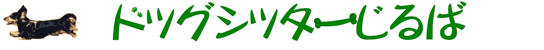 ジルのページ | ドッグシッターじるば  |名古屋市瑞穂区 天白区 昭和区のドッグシッター